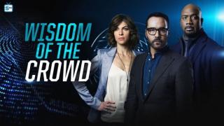 Wisdom of the Crowd - plakat