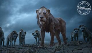 Król lew - zdjęcie
