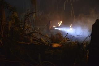 Swamp Thing: sezon 1, odcinek 1 - zdjęcie