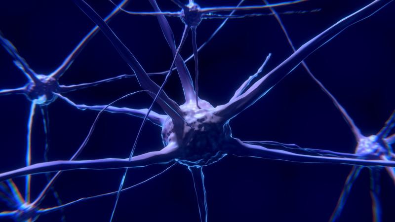 Naukowcy skomunikowali syntetyczne neurony z biologicznymi. Przez internet