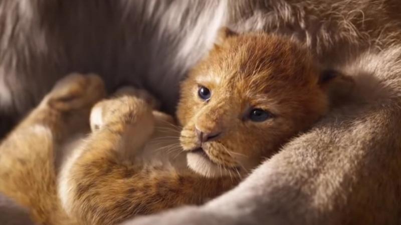 Król lew - nowe plakaty filmu