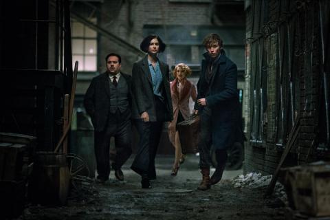 Sequel Fantastycznych zwierząt skupi się na Dumbledorze i Grindelwaldzie