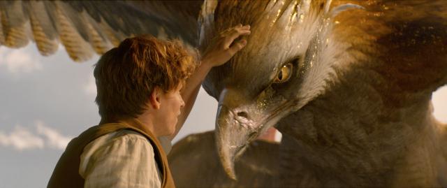Fantastyczne zwierzęta i jak je znaleźć: Rowling wyda scenariusz
