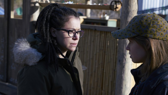 Sebastian Stan i Tatiana Maslany negocjują udział w thrillerze Destroyer