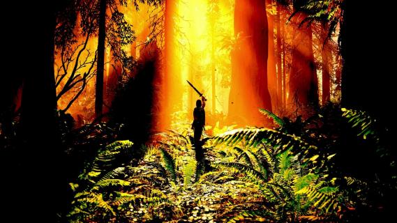 Shadow of the Colossus w wersji na PlayStation 4 zaoferuje tryb fotograficzny