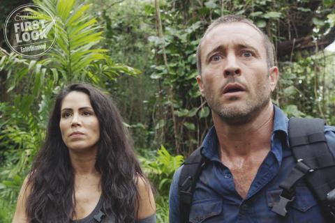 Hawaii 5.0, Madam Secretary i inne – będą nowe sezony seriali