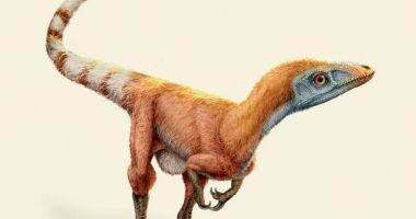 Dinozaury odkryte na nowo. Jak rewolucja naukowa rewiduje historię - recenzja książki