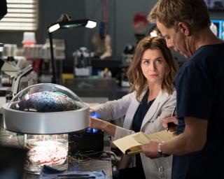 Chirurdzy - sezon 15. - zdjęcie