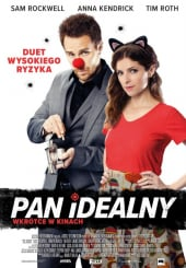 Pan Idealny