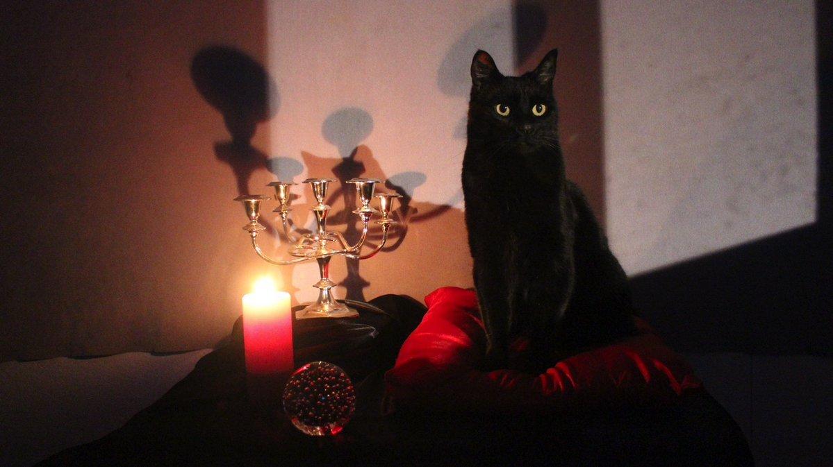 Sabrina, nastoletnia czarownica - Salem